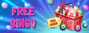 Free Bingo No Deposit Games to Play